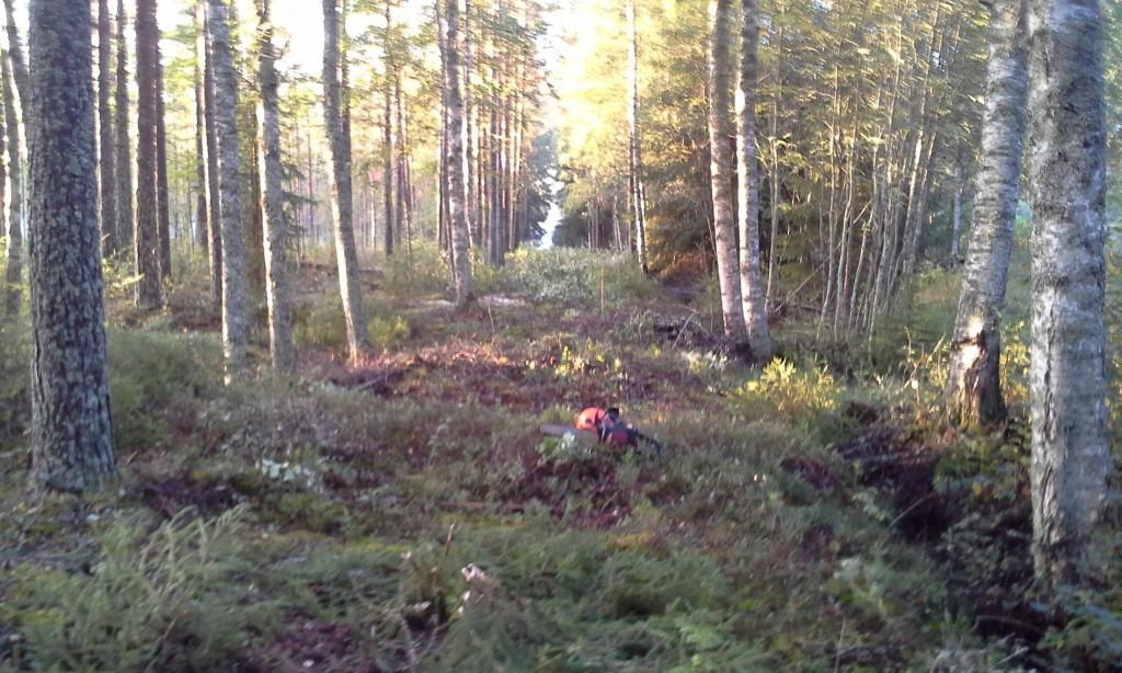 HolmedalsNet - 20130831 - 1