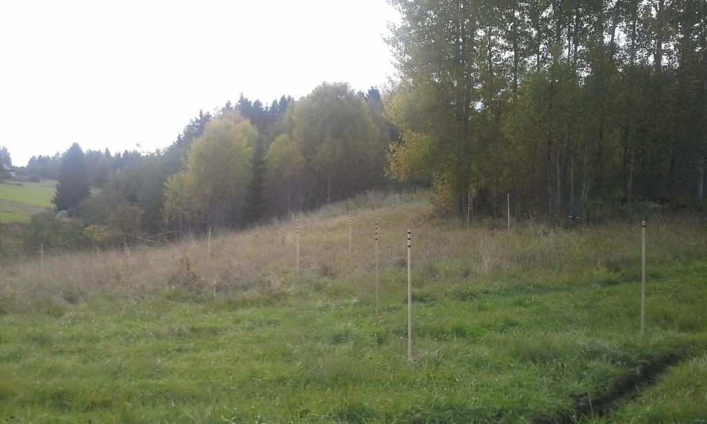 HolmedalsNet - 20130928 - 1